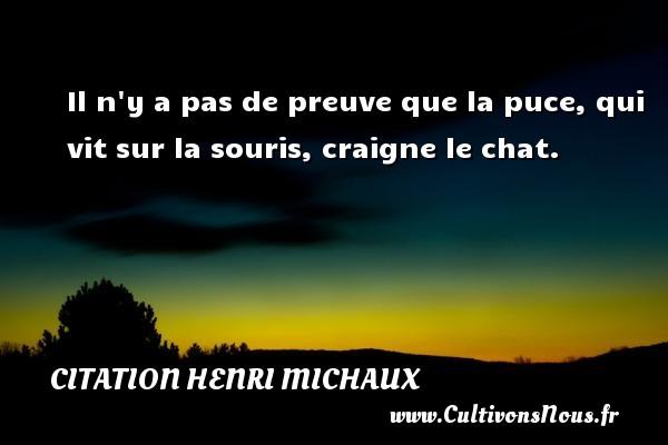 Il n y a pas de preuve que la puce, qui vit sur la souris, craigne le chat.  Une citation de Henri Michaux CITATION HENRI MICHAUX