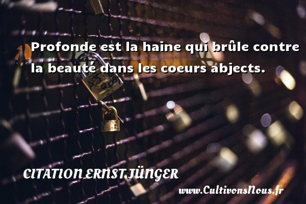 Citation Ernst Jünger - Profonde est la haine qui brûle contre la beauté dans les coeurs abjects. Une citation d  Ernst Jünger CITATION ERNST JÜNGER