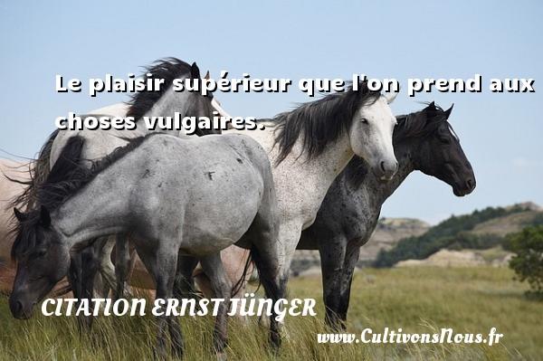 Le plaisir supérieur que l on prend aux choses vulgaires. Une citation d  Ernst Jünger CITATION ERNST JÜNGER - Citation Ernst Jünger