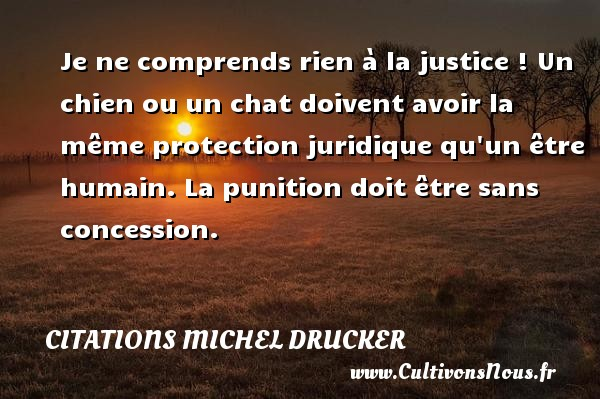 Citations - Citations Michel Drucker - Je ne comprends rien à la justice ! Un chien ou un chat doivent avoir la même protection juridique qu un être humain. La punition doit être sans concession.   Une citation de Michel Drucker CITATIONS MICHEL DRUCKER