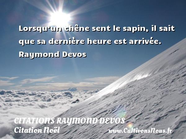 Lorsqu'un chêne sent le sapin, il sait que sa dernière heure est arrivée.   Raymond Devos   Une citation sur Noël CITATIONS RAYMOND DEVOS - Citation Noël