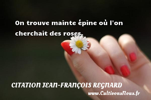 On trouve mainte épine où l on cherchait des roses. Une citation de Jean-François Regnard CITATION JEAN-FRANÇOIS REGNARD - Citation Jean-François Regnard