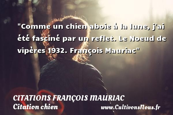 Citations - Citations François Mauriac - Citation chien - Comme un chien aboie à la lune, j ai été fasciné par un reflet.  Le Noeud de vipères 1932. François Mauriac   Une citation sur le chien CITATIONS FRANÇOIS MAURIAC