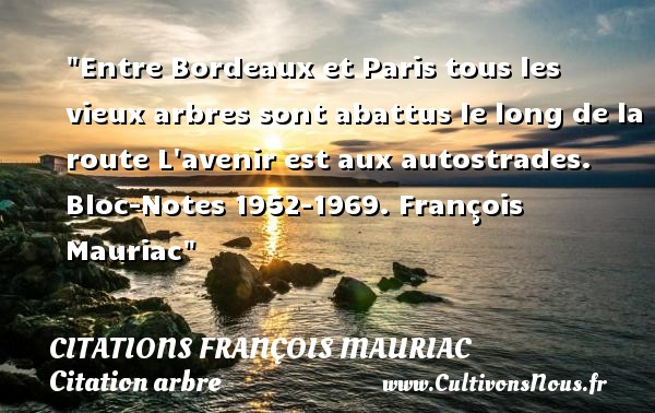 Entre Bordeaux et Paris tous les vieux arbres sont abattus le long de la route L avenir est aux autostrades.  Bloc-Notes 1952-1969. François Mauriac   Une citation sur arbre CITATIONS FRANÇOIS MAURIAC - Citations François Mauriac - Citation arbre