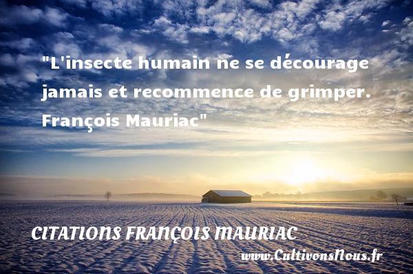 L insecte humain ne se décourage jamais et recommence de grimper.   François Mauriac   Une citation sur le courage CITATIONS FRANÇOIS MAURIAC - Citations François Mauriac - Citation courage