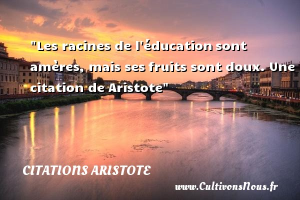Citations - Citations Aristote - Citation éducation - Citation fruit - Les racines de l éducation sont amères, mais ses fruits sont doux.   Aristote   Une citation sur l éducation CITATIONS ARISTOTE