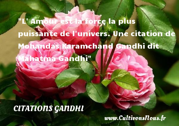 L  Amour est la force la plus puissante de l univers.  Une  citation  de Mohandas Karamchand Gandhi dit Mahatma Gandhi CITATIONS GANDHI - Citations Gandhi