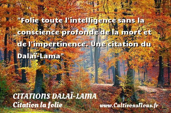 Folie toute l intelligencesans la conscience profondede la mort et del impertinence.  Une  citation  du Dalaï-Lama CITATIONS DALAÏ-LAMA - Citations Dalaï-Lama - Citation folie