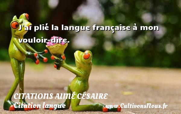 J ai plié la langue française à mon vouloir-dire.   Une citation d Aimé Césaire CITATIONS AIMÉ CÉSAIRE - Citations Aimé Césaire - Citation langue