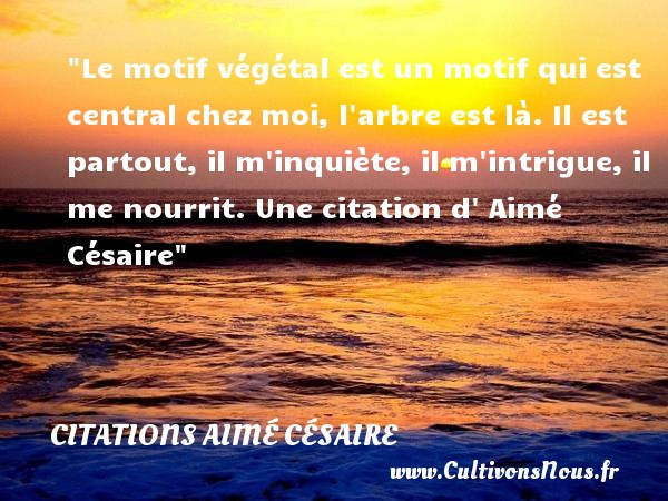 Le motif végétal est un motif qui est central chez moi, l arbre est là. Il est partout, il m inquiète, il m intrigue, il me nourrit.  Une  citation  d  Aimé Césaire CITATIONS AIMÉ CÉSAIRE - Citations Aimé Césaire