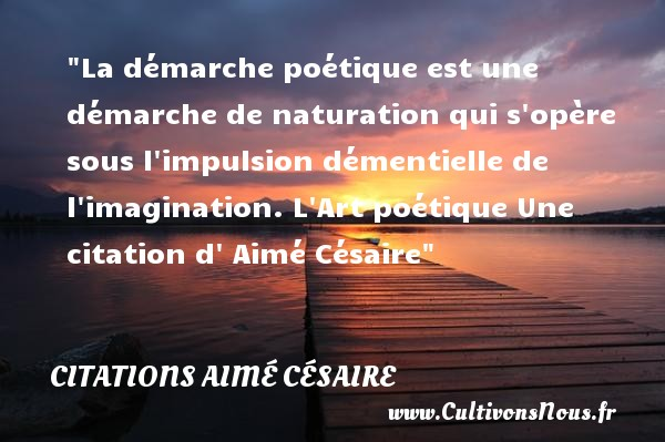 La démarche poétique est une démarche de naturation qui s opère sous l impulsion démentielle de l imagination.  L Art poétique Une  citation  d  Aimé Césaire CITATIONS AIMÉ CÉSAIRE - Citations Aimé Césaire - Citation imagination