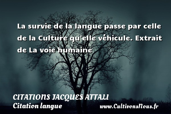 La survie de la langue passe par celle de la Culture qu elle véhicule.  Extrait de La voie humaine   Une citation de Jacques Attali CITATIONS JACQUES ATTALI - Citation langue