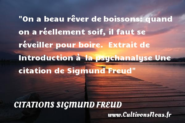 On a beau rêver de boissons: quand on a réellement soif, il faut se réveiller pour boire.   Extrait de Introduction à  la psychanalyse  Une  citation  de Sigmund Freud CITATIONS SIGMUND FREUD