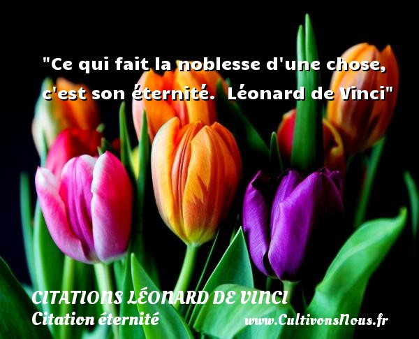 Ce qui fait la noblesse d une chose, c est son éternité.   Léonard de Vinci   Une citation sur éternité CITATIONS LÉONARD DE VINCI - Citations Léonard de Vinci - Citation éternité