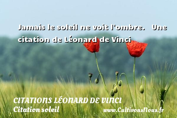 Jamais le soleil ne voit l ombre.     Une  citation  de Léonard de Vinci CITATIONS LÉONARD DE VINCI - Citations Léonard de Vinci - Citation soleil
