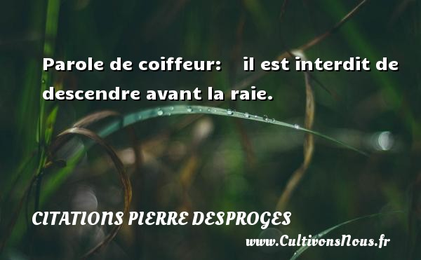 Citations Pierre Desproges - Parole de coiffeur:  il est interdit de descendre avant la raie. CITATIONS PIERRE DESPROGES