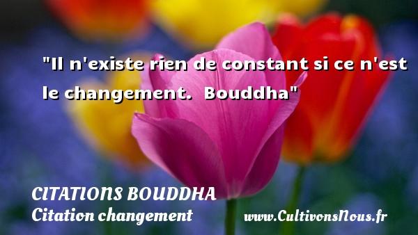 Il n existe rien de constant si ce n est le changement.   Bouddha   Une citation sur le changement CITATIONS BOUDDHA - Citation changement