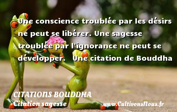 Une conscience troublée par les désirs ne peut se libérer. Une sagesse troublée par l ignorance ne peut se développer.     Une  citation  de Bouddha CITATIONS BOUDDHA - Citation sagesse