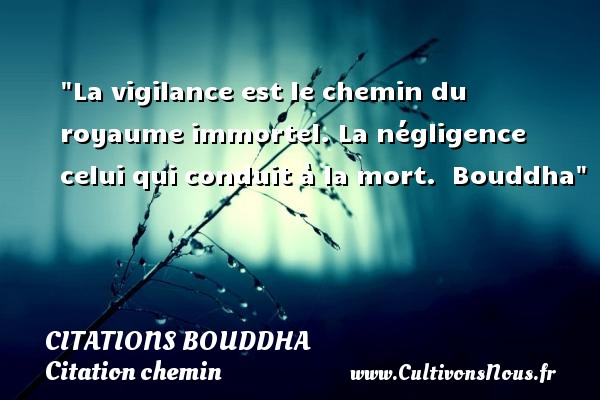 Citations Bouddha - Citation chemin - La vigilance est le chemin du royaume immortel. La négligence celui qui conduit à la mort.   Bouddha   Une citation sur le chemin CITATIONS BOUDDHA