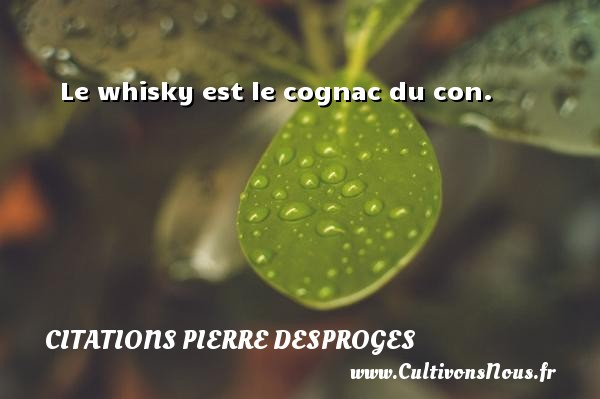 Le whisky est le cognac du con. CITATIONS PIERRE DESPROGES