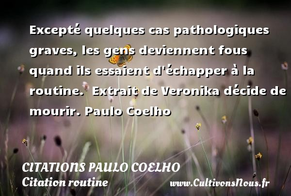 Excepté quelques cas pathologiques graves, les gens deviennent fous quand ils essaient d échapper à la routine.   Extrait de Veronika décide de mourir. Paulo Coelho CITATIONS PAULO COELHO - Citation routine
