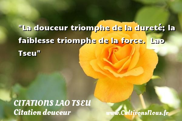 Citations Lao Tseu - Citation douceur - La douceur triomphe de la dureté; la faiblesse triomphe de la force.   Lao Tseu   Une citation sur la douceur CITATIONS LAO TSEU
