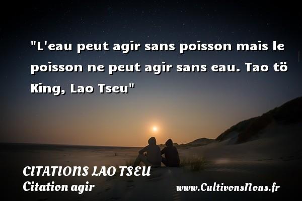Citations Lao Tseu - Citation agir - L eau peut agir sans poisson mais le poisson ne peut agir sans eau.  Tao tö King, Lao Tseu   Une citation agir CITATIONS LAO TSEU