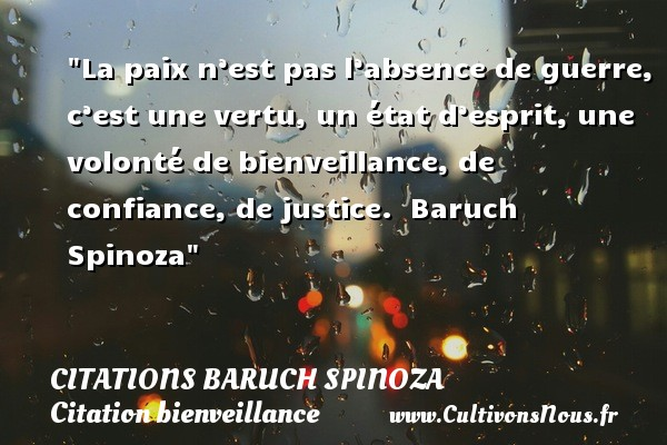 Citaten Spinoza Citaten : Citation volonté les citations sur lea