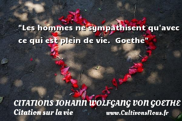 Citations Johann Wolfgang von Goethe - Citation sur la vie - Les hommes ne sympathisent qu avec ce qui est plein de vie.   Goethe   Une citation sur la vie CITATIONS JOHANN WOLFGANG VON GOETHE
