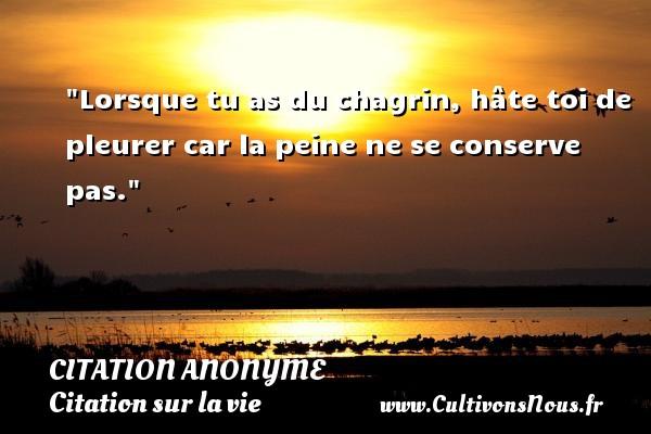 Citation anonyme - Citation sur la vie - Lorsque tu as du chagrin, hâte toi de pleurer car la peine ne se conserve pas.   Une citation sur la vie CITATION ANONYME