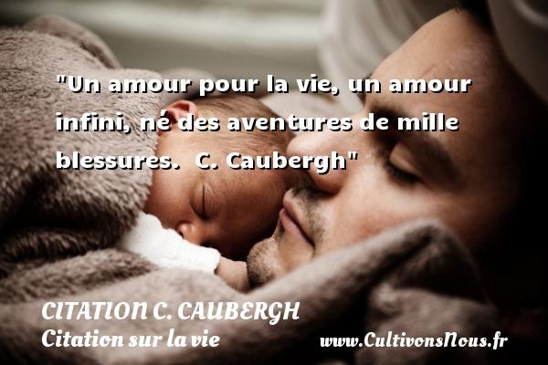 Un amour pour la vie, un amour infini, né des aventures de mille blessures.   C. Caubergh   Une citation sur la vie CITATION C. CAUBERGH