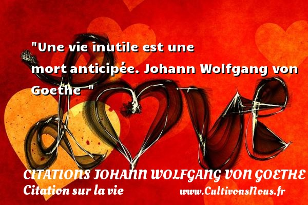 Citations Johann Wolfgang von Goethe - Citation sur la vie - Une vie inutile est une mortanticipée.  Johann Wolfgang von Goethe   CITATIONS JOHANN WOLFGANG VON GOETHE