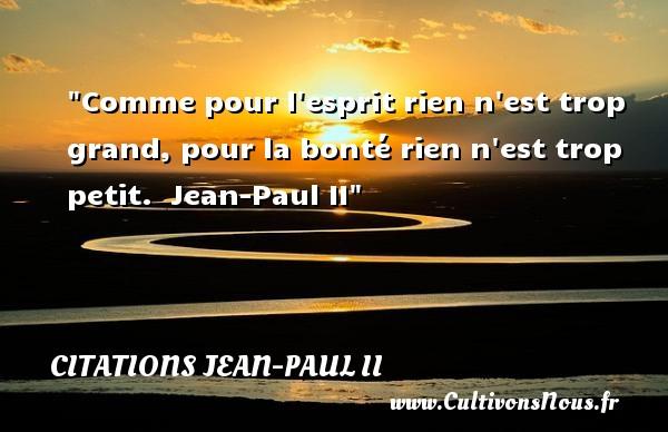 Comme pour l esprit rien n est trop grand, pour la bonté rien n est trop petit.   Jean-Paul II   Une citation sur la bonté CITATIONS JEAN-PAUL II - citation bonté