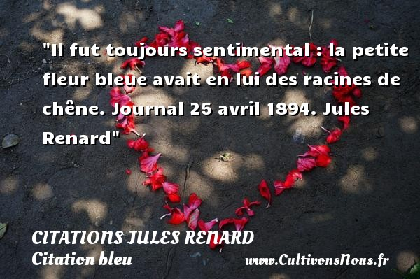 Il fut toujours sentimental : la petite fleur bleue avait en lui des racines de chêne.  Journal 25 avril 1894. Jules Renard   Une citation sur bleu CITATIONS JULES RENARD - Citation bleu