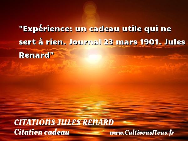 Citations Jules Renard - Citation cadeau - Expérience: un cadeau utile qui ne sert à rien.  Journal 23 mars 1901. Jules Renard   Une citation sur cadeau CITATIONS JULES RENARD
