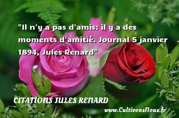 Il n y a pas d amis: il y a des moments d amitié.  Journal 5 janvier 1894, Jules Renard   Une citations sur l ami CITATIONS JULES RENARD - Citation ami