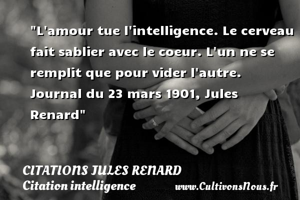 L Amour Tue L Intelligence Citations Jules Renard