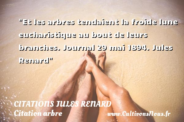 Citations Jules Renard - Citation arbre - Et les arbres tendaient la froide lune eucharistique au bout de leurs branches.  Journal 29 mai 1894. Jules Renard   Une citation sur arbre CITATIONS JULES RENARD