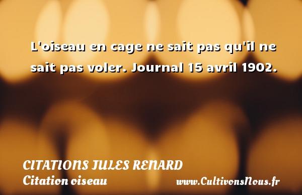 L oiseau en cage ne sait pas qu il ne sait pas voler.  Journal 15 avril 1902.   Une citation de Jules Renard CITATIONS JULES RENARD - Citation oiseau