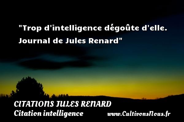 Trop d intelligence dégoûte d elle.  Journal de Jules Renard   Une citation sur l intelligence CITATIONS JULES RENARD - Citation intelligence