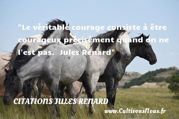 Le véritable courage consiste à être courageux précisément quand on ne l est pas.   Jules Renard   Une citations sur le courage CITATIONS JULES RENARD - Citation courage