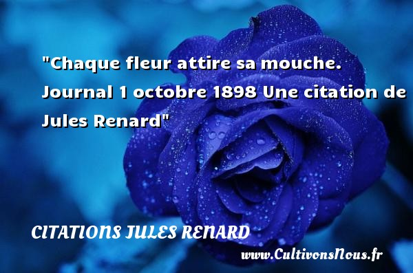 Chaque fleur attire sa mouche. Journal  1 octobre 1898  Une  citation  de Jules Renard CITATIONS JULES RENARD - Citation fleur