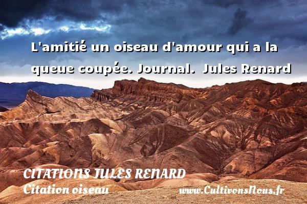 Citations Jules Renard - Citation oiseau - L amitié un oiseau d amour qui a la queue coupée.  Journal. Jules Renard CITATIONS JULES RENARD