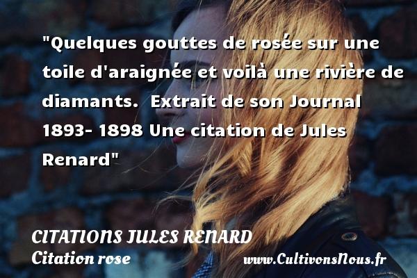 Citations Jules Renard - Citation rose - Quelques gouttes de rosée sur une toile d araignée et voilà une rivière de diamants.   Extrait de son Journal 1893- 1898   CITATIONS JULES RENARD