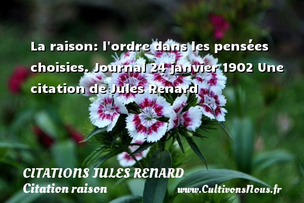 La raison: l ordre dans les pensées choisies.  Journal 24 janvier 1902  Une  citation  de Jules Renard CITATIONS JULES RENARD - Citation raison