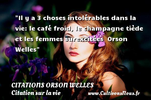 Il y a 3 choses intolérables dans la vie: le café froid, le champagne tiède et les femmes surexcitées   Orson Welles   Une citation sur la vie CITATIONS ORSON WELLES