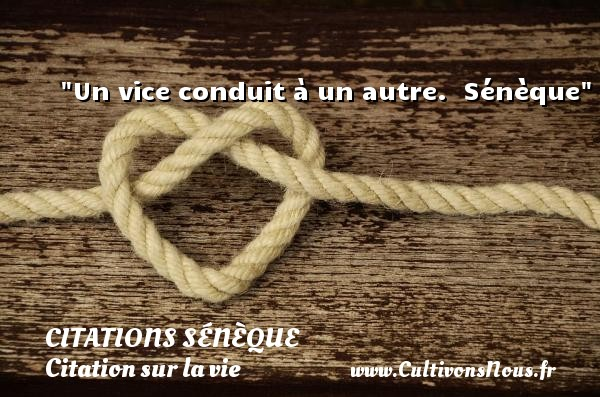 Citations Sénèque - Citation sur la vie - Un vice conduit à un autre.   Sénèque   Une citation sur la vie CITATIONS SÉNÈQUE