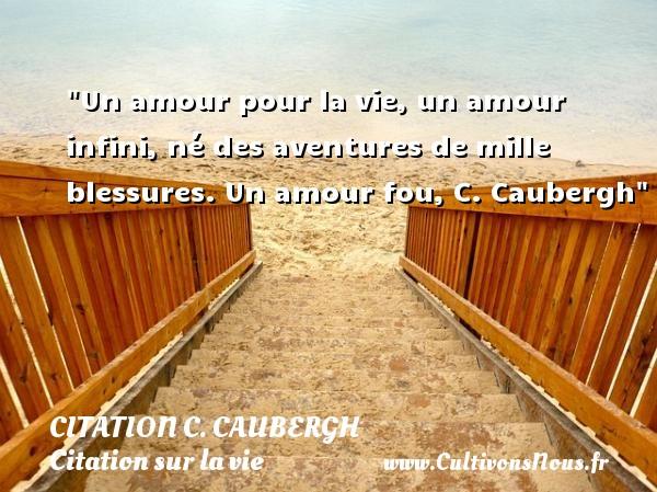 Un amour pour la vie, un amour infini, né des aventures de mille blessures.  Un amour fou, C. Caubergh   Une citation sur la vie CITATION C. CAUBERGH