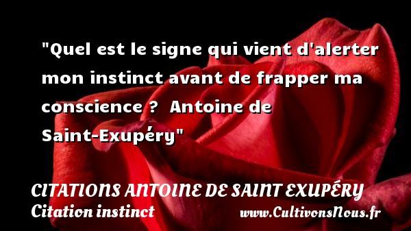 Citations Antoine de Saint Exupéry - Citation instinct - Quel est le signe qui vient d alerter mon instinct avant de frapper ma conscience ?   Antoine de Saint-Exupéry   Une citation sur l instinct   CITATIONS ANTOINE DE SAINT EXUPÉRY