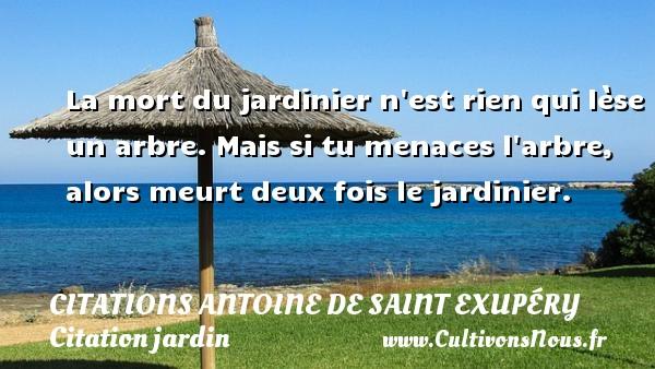 Citations Antoine de Saint Exupéry - Citation jardin - La mort du jardinier n est rien qui lèse un arbre. Mais si tu menaces l arbre, alors meurt deux fois le jardinier.     Une citation d Antoine de Saint-Exupéry CITATIONS ANTOINE DE SAINT EXUPÉRY